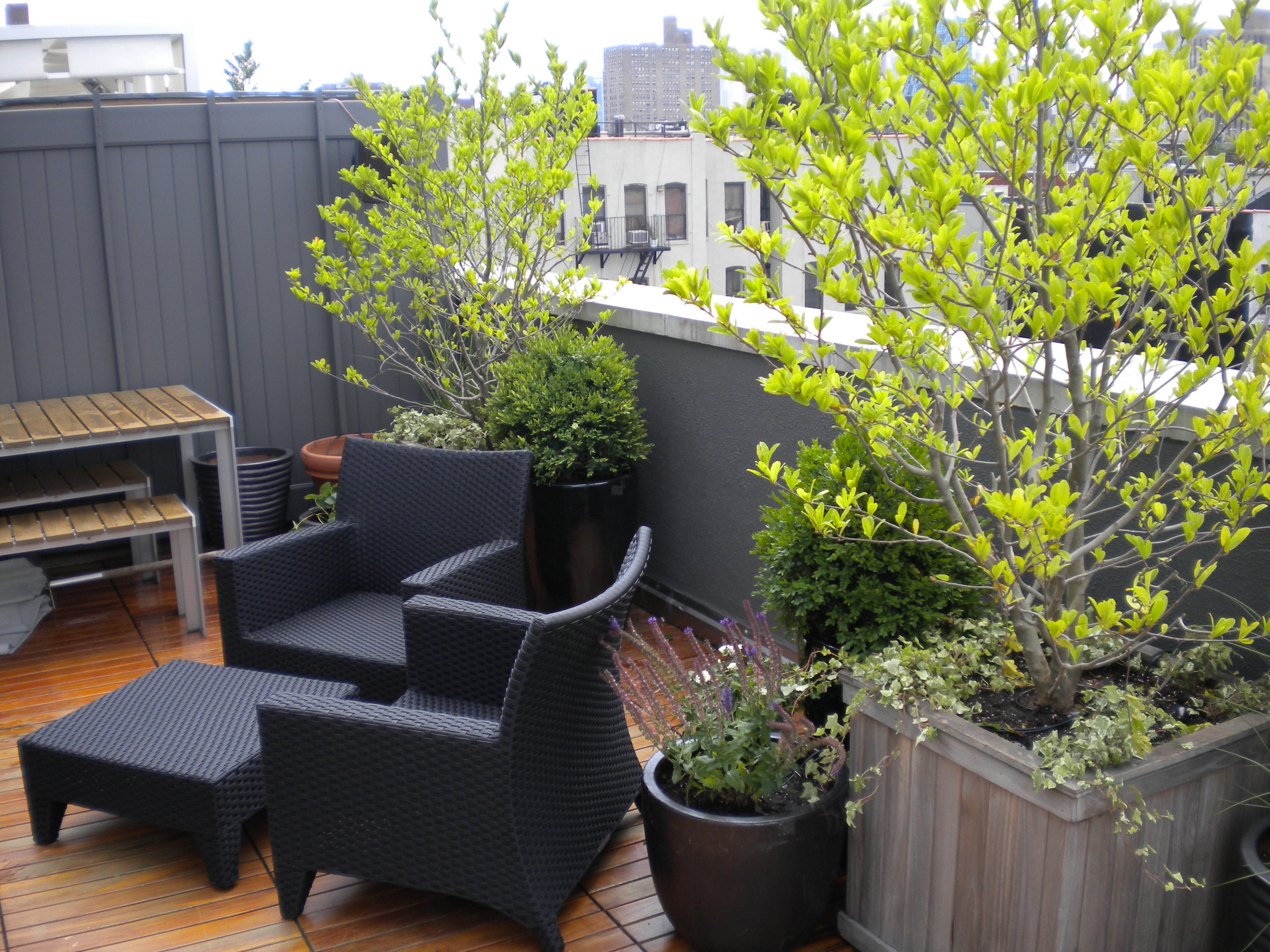 Something to see lower east side roof garden erbology for New garden design