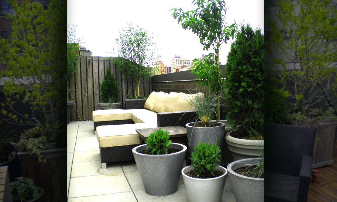 rooftop gardens Erbology