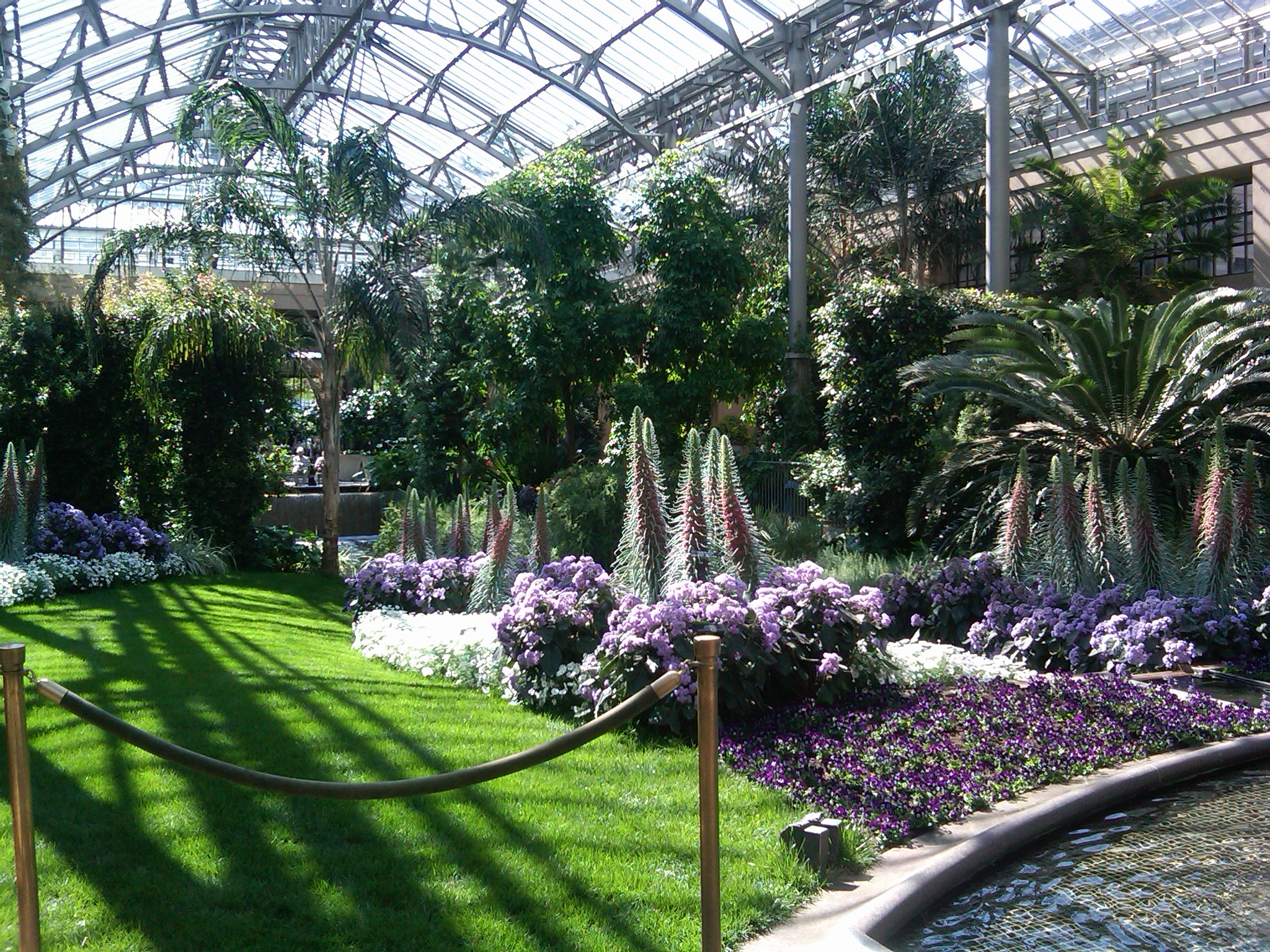 A springtime stroll through longwood gardens erbology for Landscaping longwood