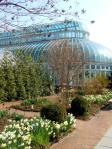 The Main Conservatory at the Brooklyn Botanic Garden
