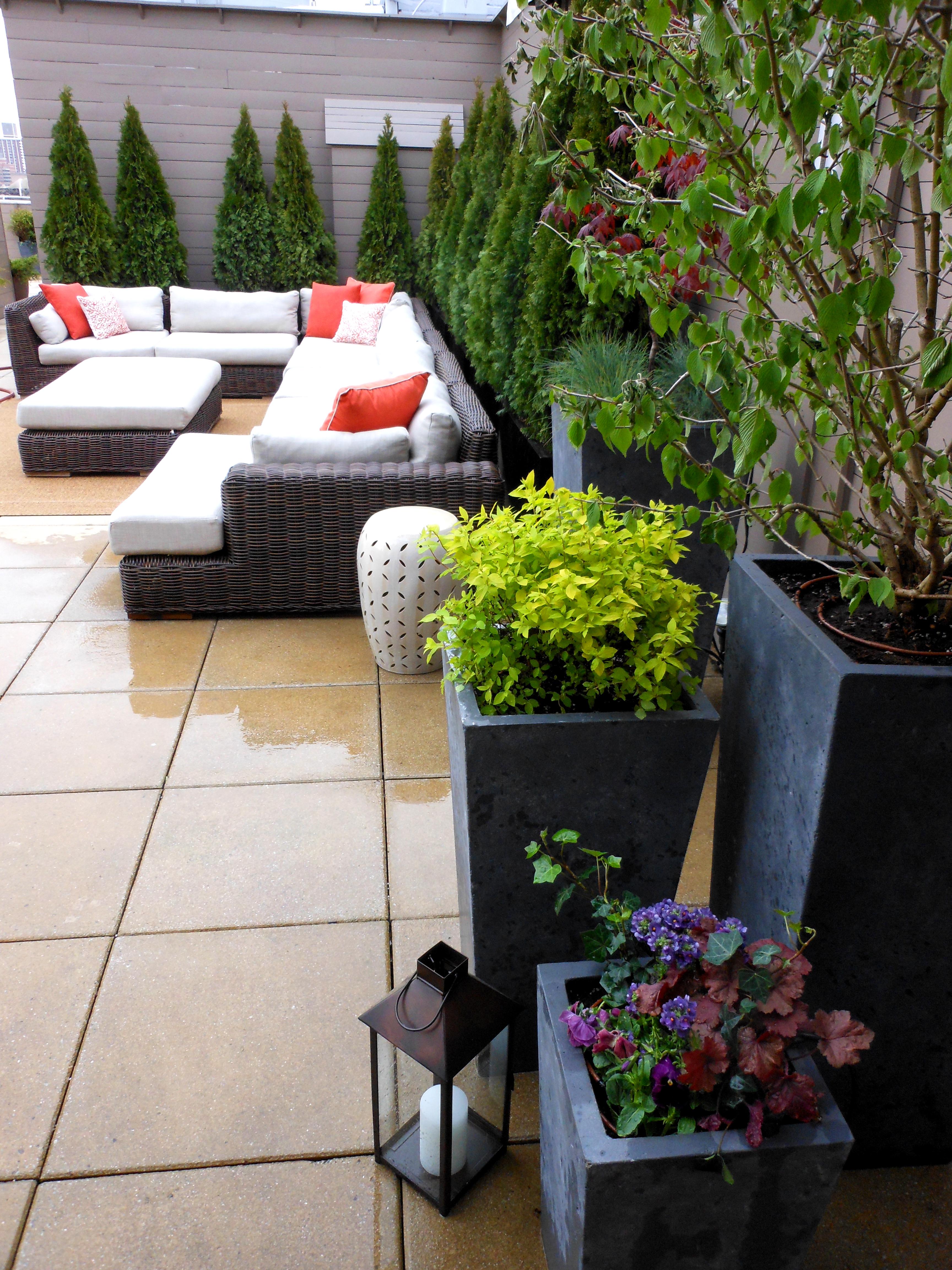 staged to sell upper west side penthouse garden erbology. Black Bedroom Furniture Sets. Home Design Ideas