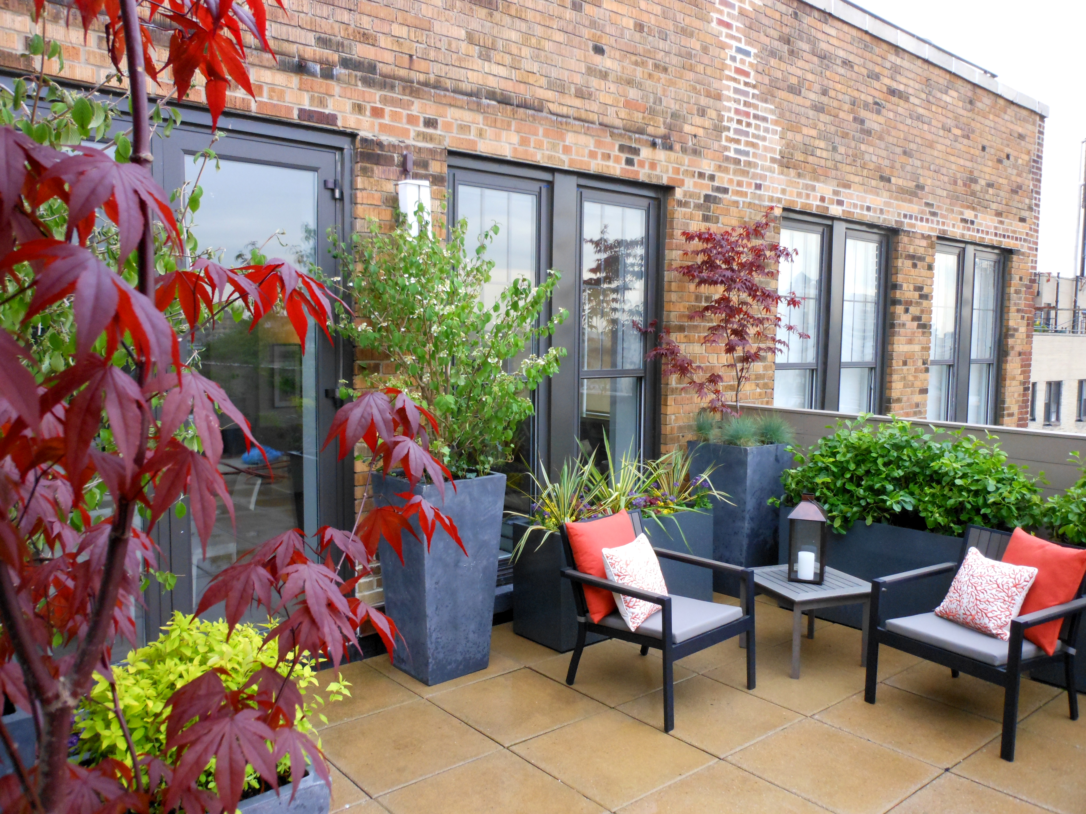 Nyc garden staging erbology - Ideas para decorar terraza atico ...