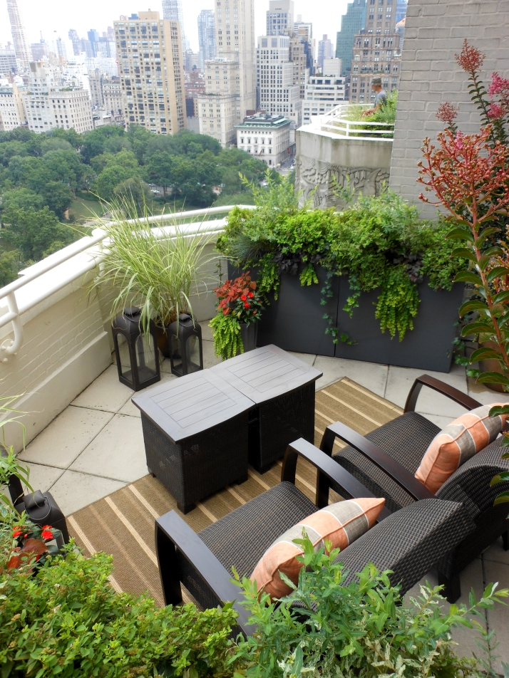 Balcony terrace verandah or roof potted plant society for Terrace decoration with plants
