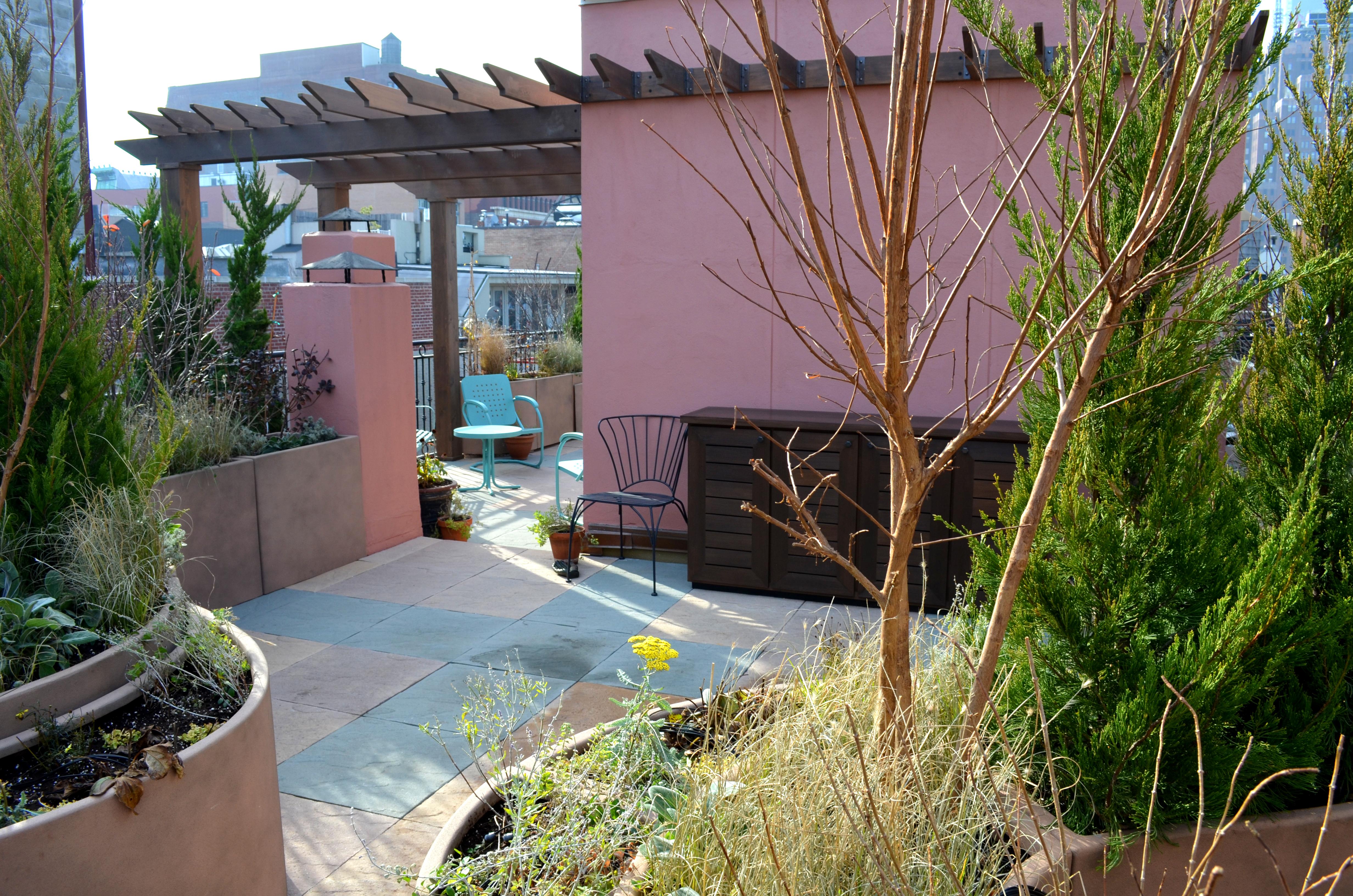 backyard garden nyc erbology
