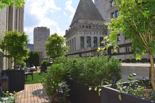 Killer Views of Wall Street and the Financial District as Seen from this Terrace Garden