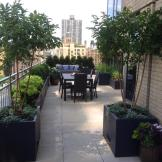Upper West Side Terrace Garden