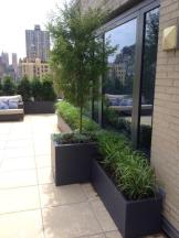 Upper West Side Terrace