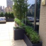 Upper West Side Terrace